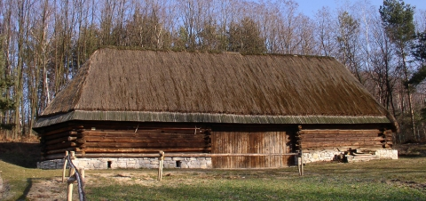 Obszerna, drewniana stodoła z dachem pokrytym strzechą.